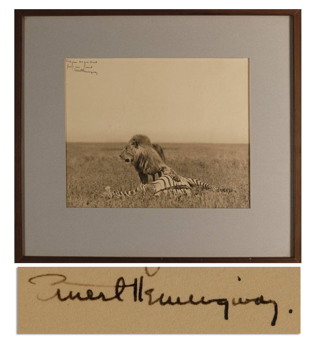 Ernest Hemingway First Edition Amazing Ernest Hemingway Signed Photograph of a Lion and Its Hunt While on Safari -- Large Photograph Measures 11'' x 9''