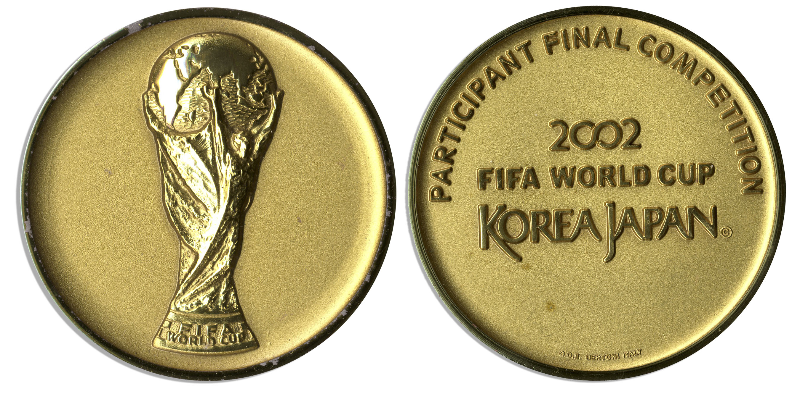 Essay about 2010 fifa world cup