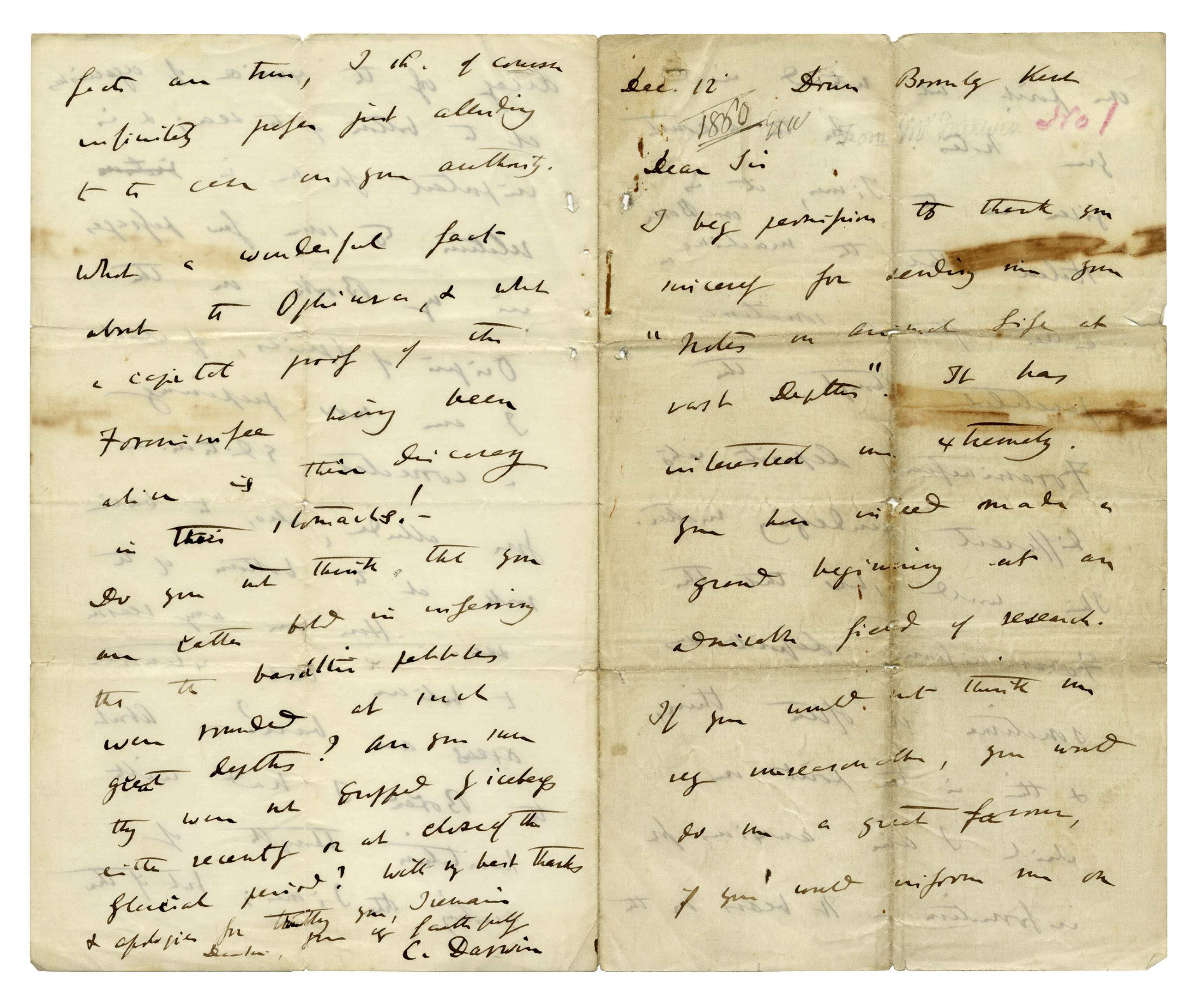 """letter to darwin At first glance, charles darwin seems an unlikely revolutionary  explaining in  an 1860 letter to american botanist asa gray that he """"had no."""
