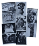 H.R. Giger Alien Artwork -- Set of 9 Photos of the Alien Creature, Space Jockey