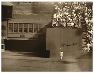 Willie Mays Signed Catch Photo -- 16 x 20 of Mays Incredible 1954 World Series Catch -- With Mays Say Hey Hologram -- Very Good