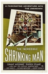 One Sheet Poster for The Incredible Shrinking Man From 1957