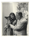 Audrey Hepburn Personally Owned 8 x 10 Production Still From Green Mansions -- Hepburn Is Shown With Ip the Deer