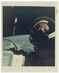 The First Selfie in Space -- Buzz Aldrin Vintage NASA 8 x 10 Photo From Gemini 12