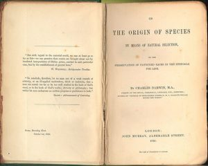 Charles Darwin On the Origin of Species 1st first edition