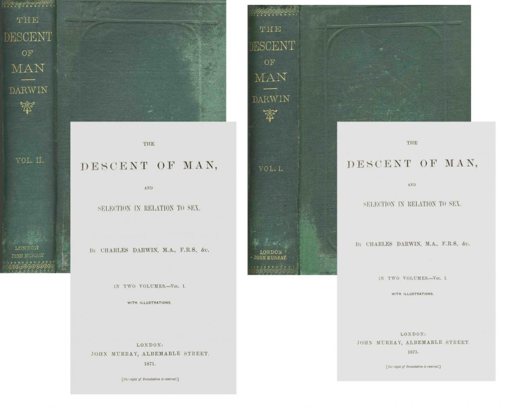 Charles Darwin Descent of Man 1st Edition